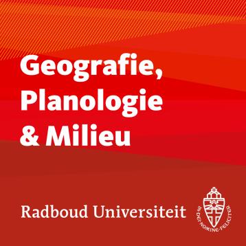 freelance, lesgeven, universiteit, Nijmegen