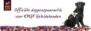 KNGF Geleidehonden doppenspaaractie