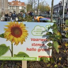 Operatie Steenbreek, Nijmegen, De Bastei, freelance